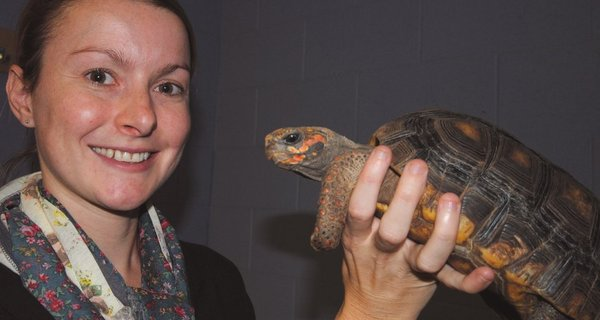 The PrimateCast Talking Cold-blooded Cognition and Conservation with Dr. Anna Wilkinson