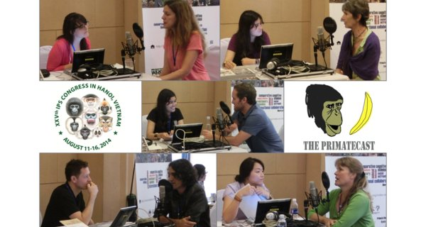 The PrimateCast #28 - Part 4/5 from Our Coverage of the 25th Congress of the Int