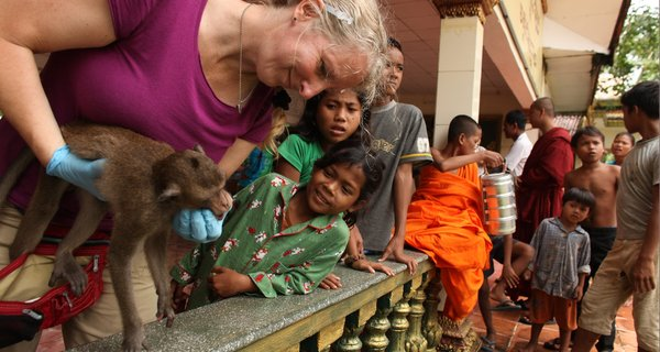 Dr. Lisa Jones-Engel screening macaques in Cambodia for infectious disaeses